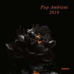 Various Artists - Pop Ambient 2019 (DJ Mix) [iTunes Plus AAC M4A]