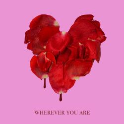 adam&steve & Maty Noyes - Wherever You Are - Single [iTunes Plus AAC M4A]