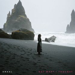Amaal - Not What I Thought - Single [iTunes Plus AAC M4A]