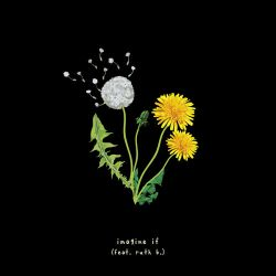 gnash - imagine if (feat. ruth b) - Single [iTunes Plus AAC M4A]