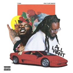 T-Pain - All I Want (feat. Flipp Dinero) - Single [iTunes Plus AAC M4A]